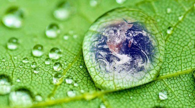 ODS13. Fundación Montemadrid y Bankia destinan 200.000 euros a 11 proyectos ambientales - Corresponsables.com